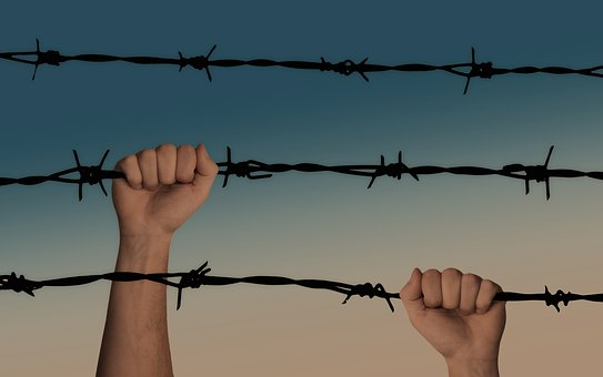 Hands, Barbed Wire, Caught, War
