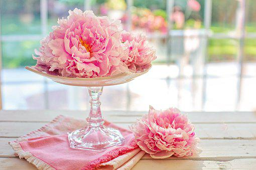 Peonies images pixabay download free pictures peonies peony flowers pink spring mightylinksfo