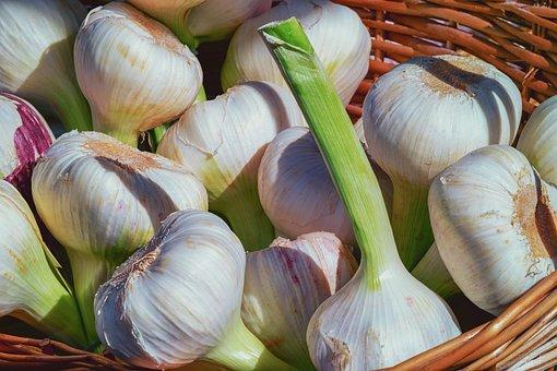 Garlic, Fresh, Herb, Aromatic, Spice