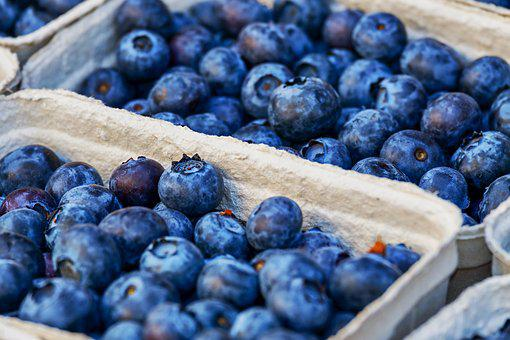 Blueberries, Berries, Fruit, Healthy