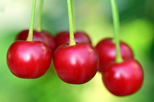 Cherries, Fruit, Fruits, Berries, Red