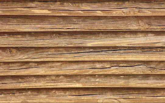 Tree, Wood, Wooden, The Background