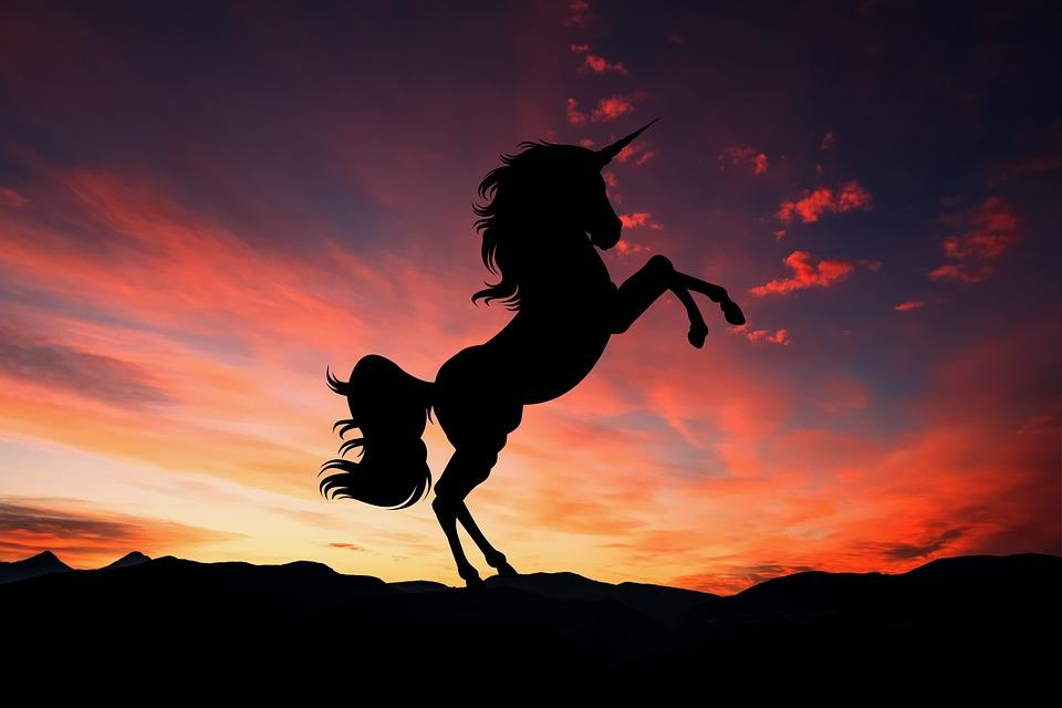 Unicornio, Puesta De Sol, Fantasía, Magia, Caballo
