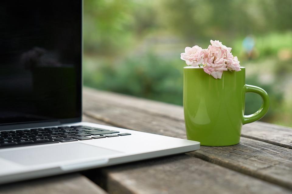 Kwiat, Puchar, Laptop, Komputer, Technologia, Wolny