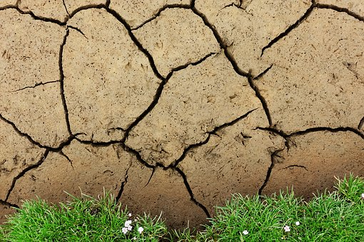 Mud, Cracked, Drought, Soil, Ground