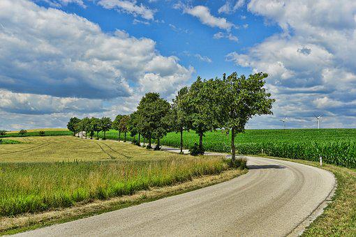自然, 道路, 木, 輸送, 空, 雲, 孤独な道, 夏
