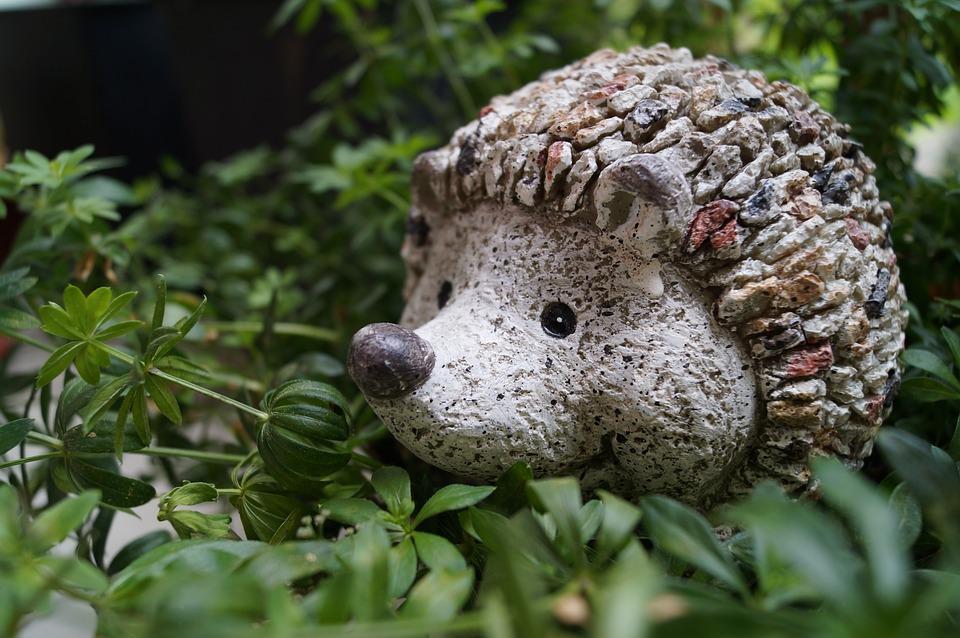 Egel tuin decoratie · gratis foto op pixabay