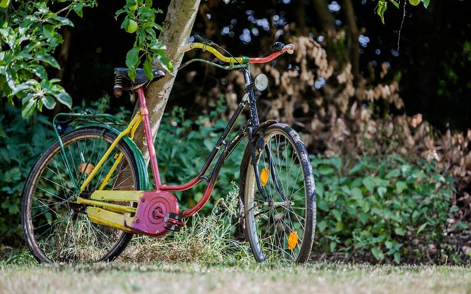 Biciclete Colorat Gradina Fotografie Gratuită Pe Pixabay