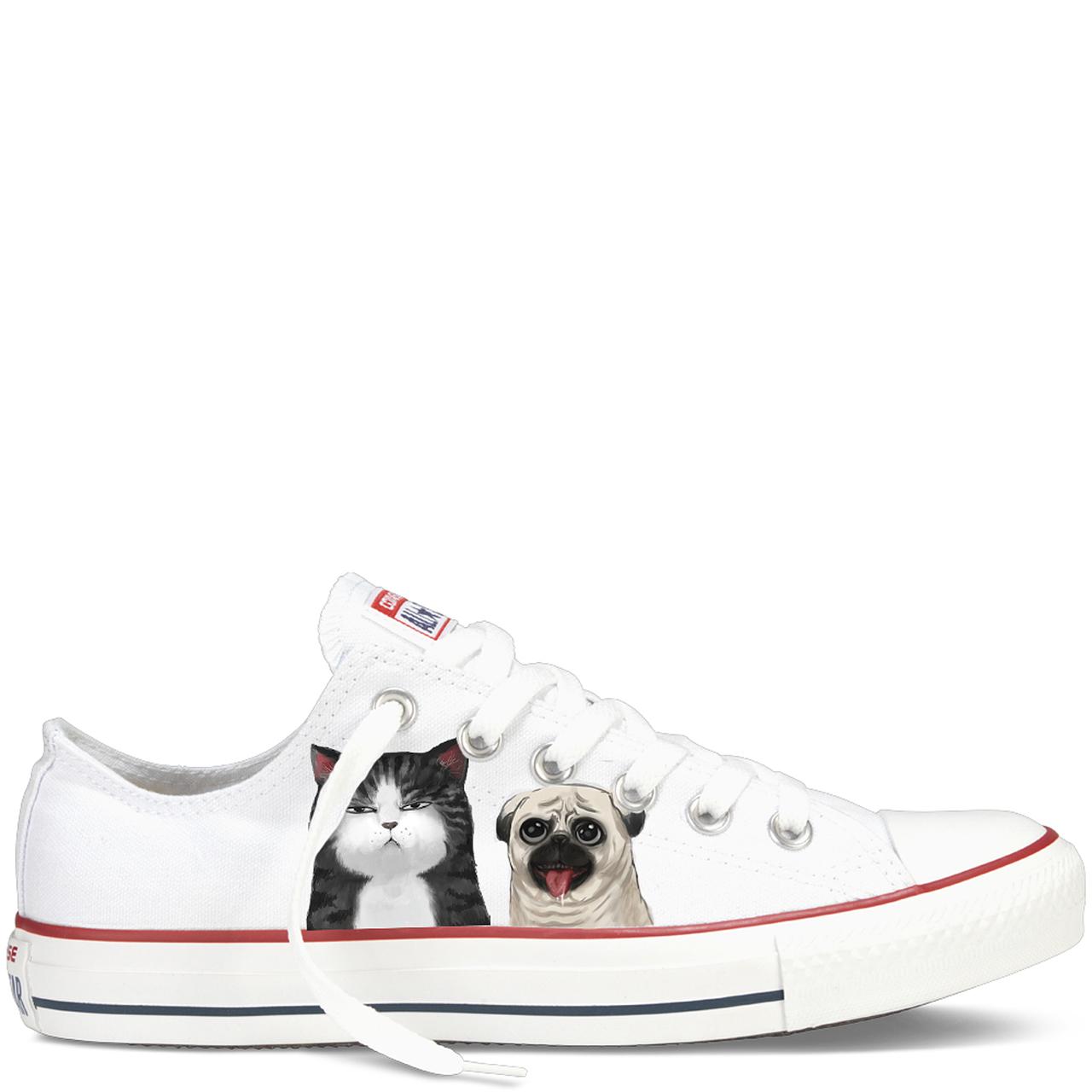 Cats Dog Shoes - Free photo on Pixabay