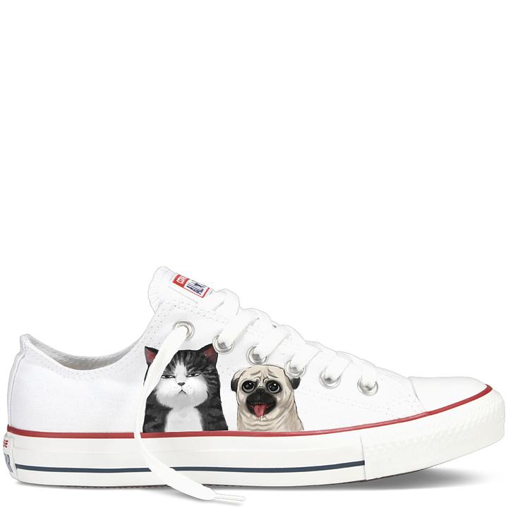 Photo Chaussures Gratuite Sur Chien Pixabay Chats uOPTkZiX