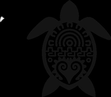 100 Free Turtle Tortoise Vectors Pixabay