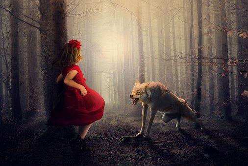 赤, オオカミ, 森林, 林, 霧, 女の子, ドレス, 怒り, シャドウ