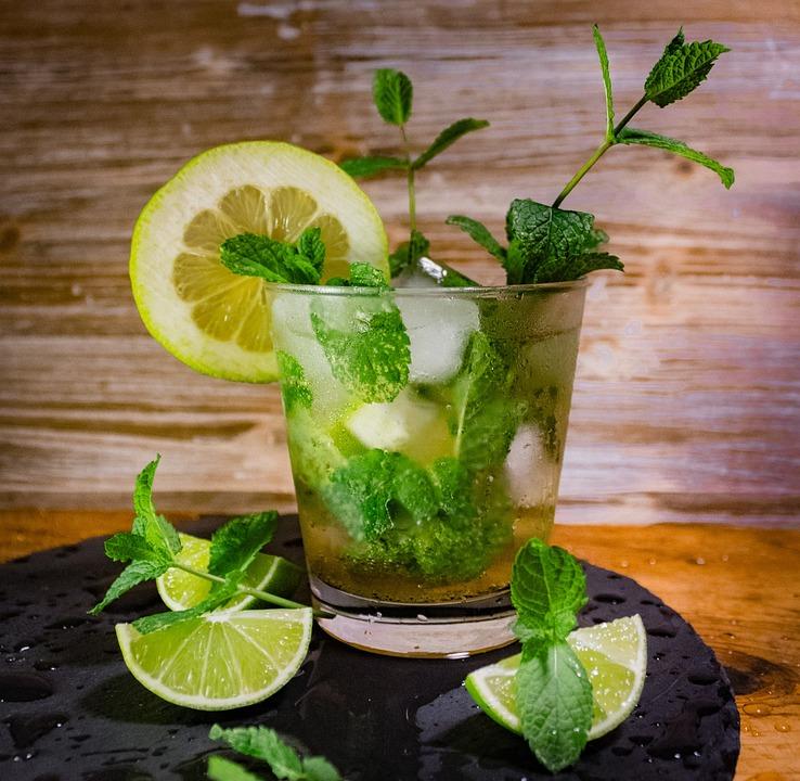 """Résultat de recherche d'images pour """"image gratuite  mojito"""" un verre de mojito avec une rondelle de citron"""