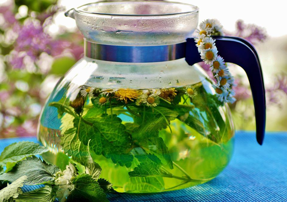 Herbal Tea The Infusion - Free photo on Pixabay