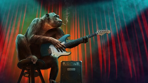 Music, Concert, Monkey, Guitar, Stage