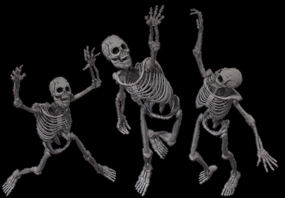 Skelett Knochen Anatomie · Kostenloses Bild auf Pixabay