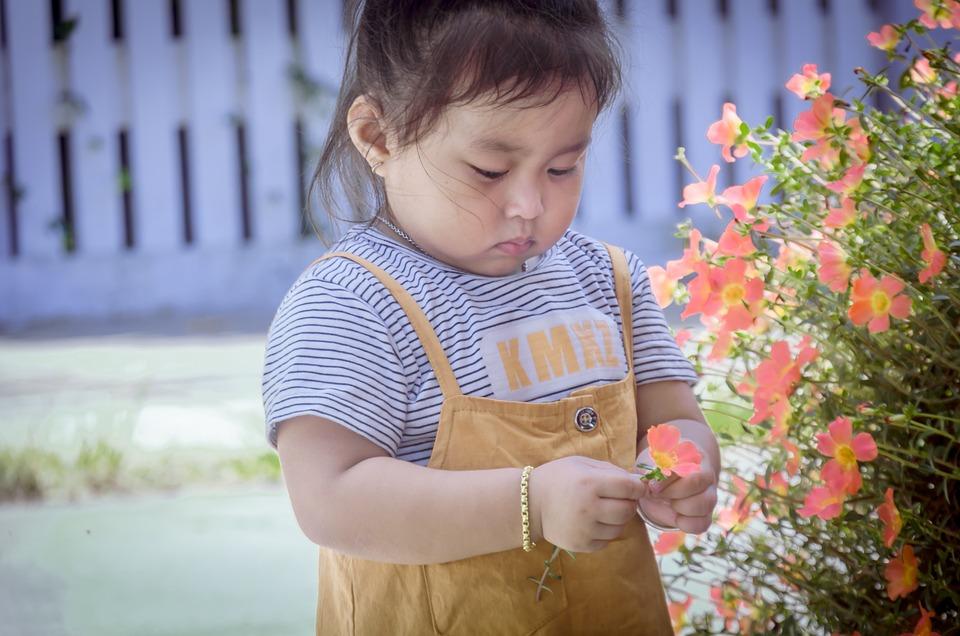 Child Play Flower Free Photo On Pixabay