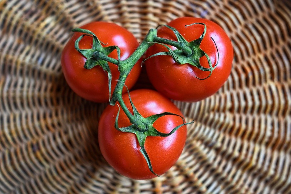 3 vine tomatoes in a basket