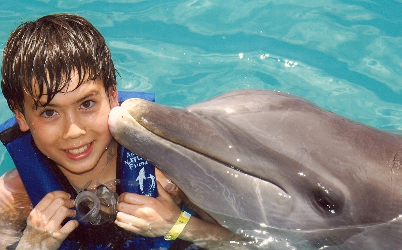 Картинки мальчика с дельфином