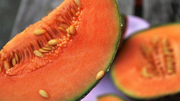 オレンジ, 野菜, メロン, おいしい, 健康, 構造、, おいしい !, 工場