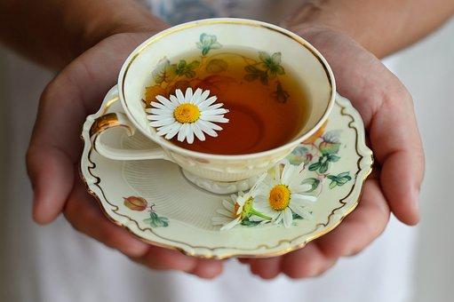 Cup, Tea, Porcelain, Drink, Decor, Break