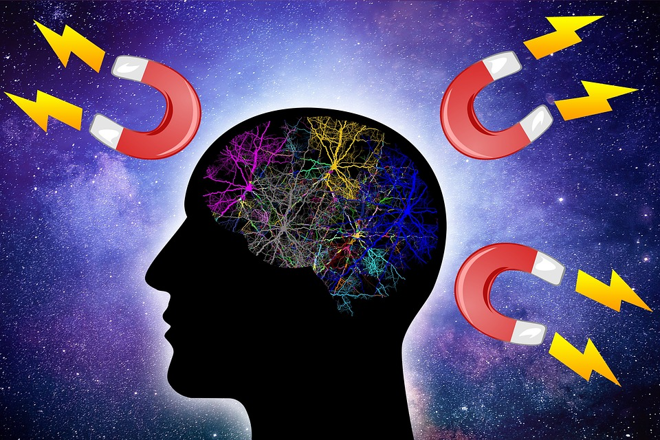 Brain, Thinking, Law, Attraction, Think, Imagination