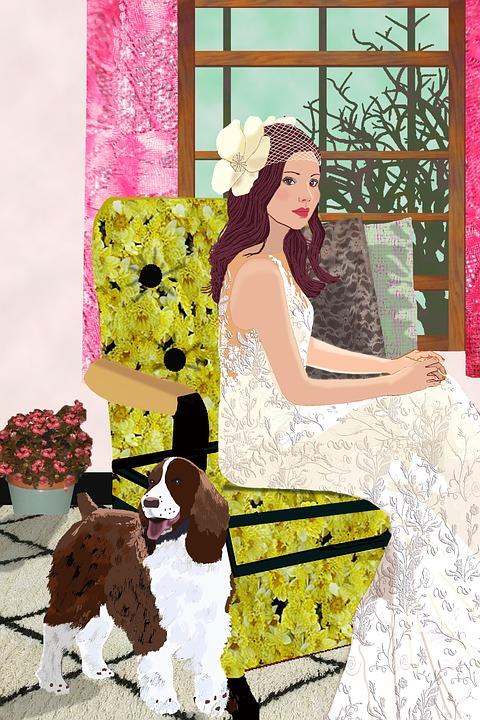 Braut Wohnzimmer English Springer · Kostenloses Bild auf Pixabay