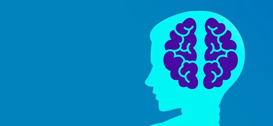 Mindset, Programmer, Machine Learning, Brain, Mind