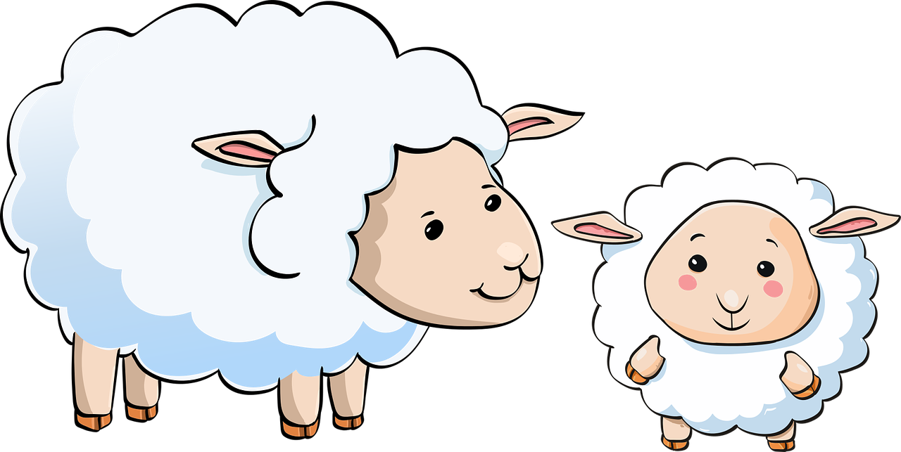 Domba Daging Bayi Gambar Vektor Gratis Di Pixabay