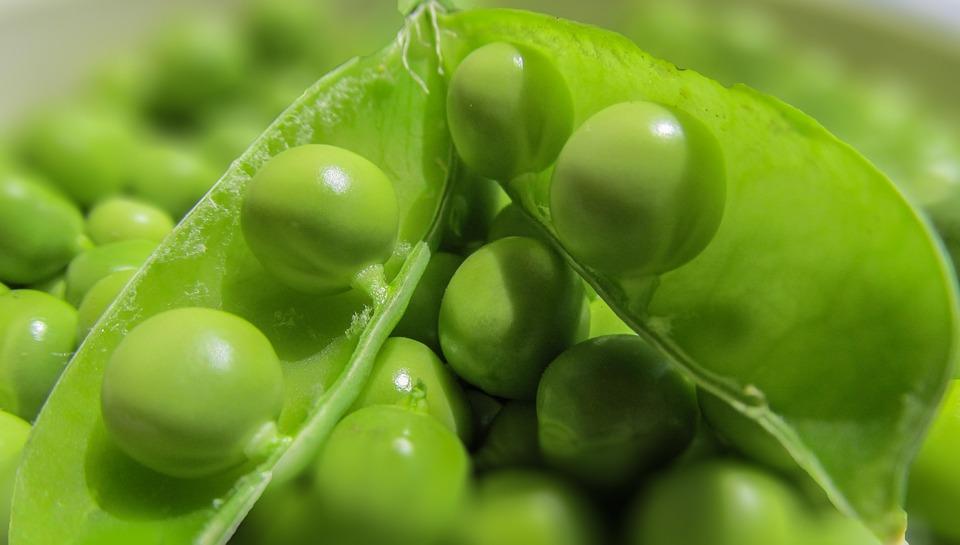 Peas, Pods, Vegetables, Pea Pod, Green, Fresh, Series