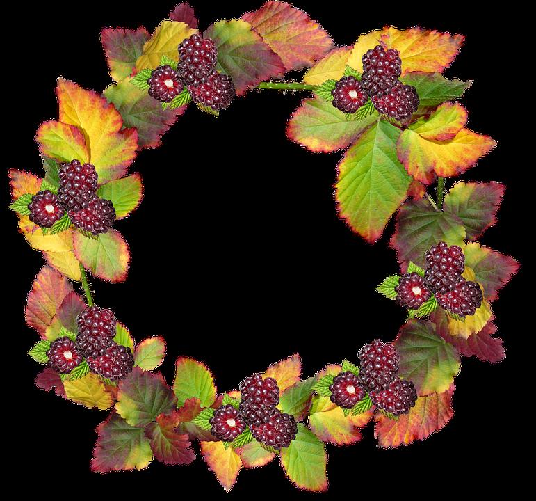 Blätter Kranz Rahmen Grenze · Kostenloses Foto auf Pixabay