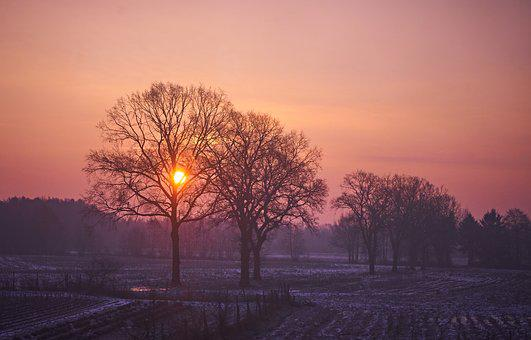 Sunrise, Country Life, Agriculture