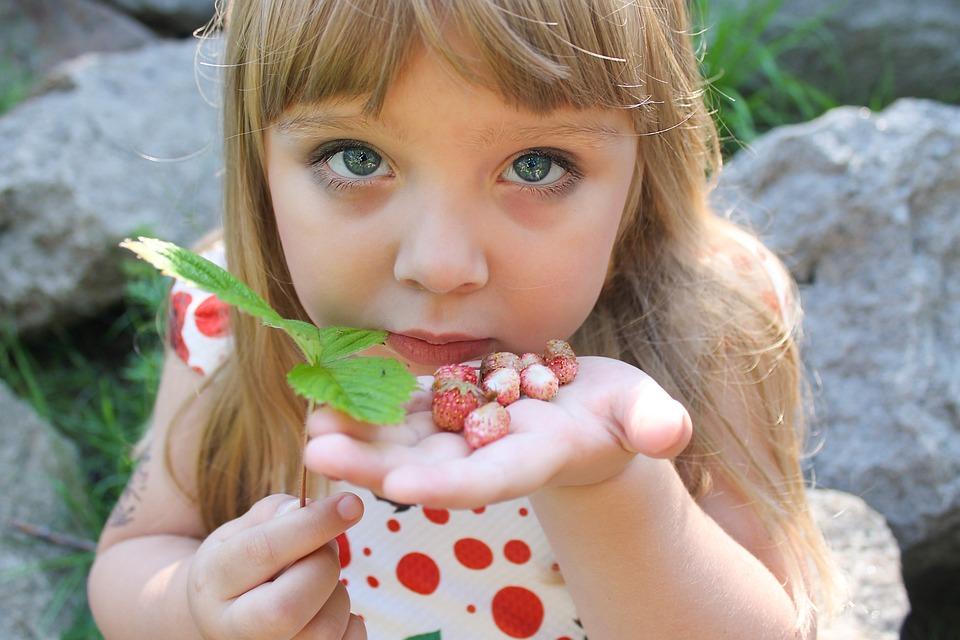 Wild Strawberry, Summer, Girl, In The Summer Of, Kids