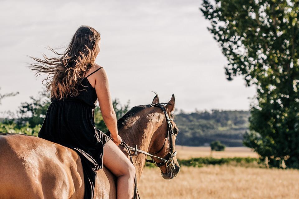 Cavallo, Ragazza, Giro, Trotto, Donna, Natura, Bellezza