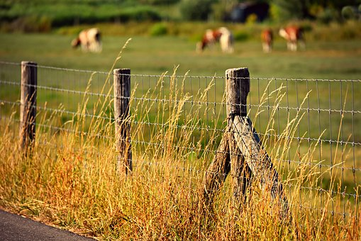 Fence Post Images Pixabay Download Free Pictures