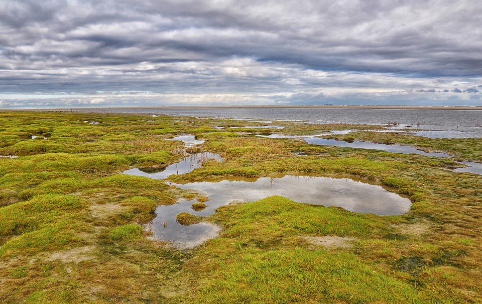 アーメラント島 海 北の海 · Pix...