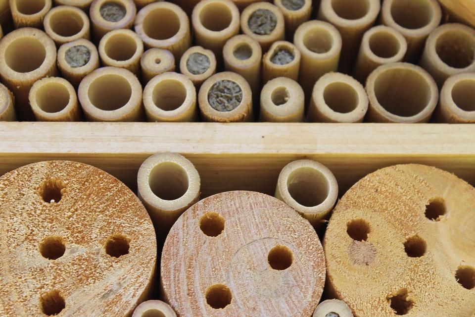 Holz, Insekten, Insektenhotel, Insektenhaus