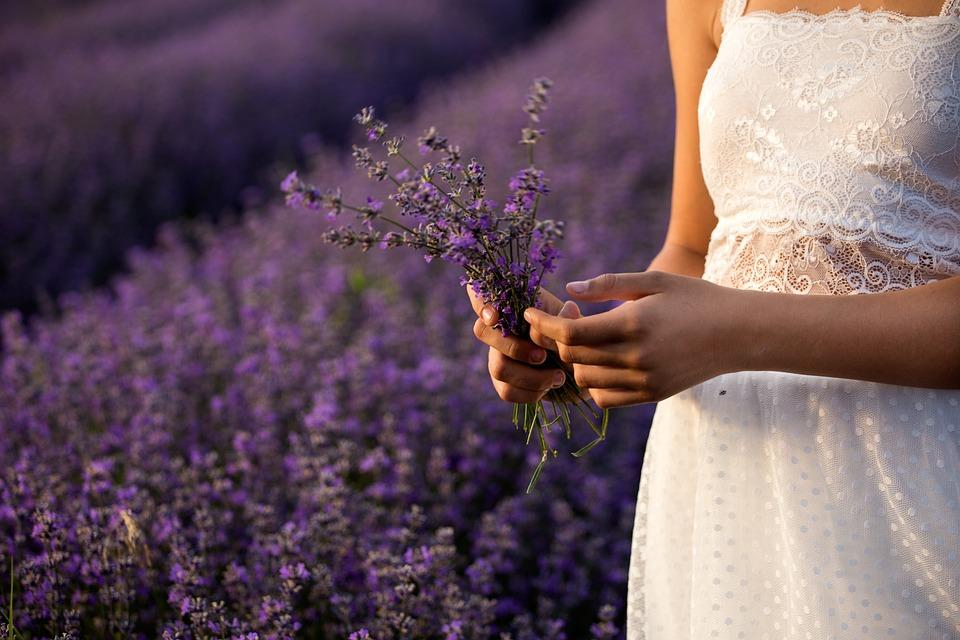 ラベンダー, 自然, フラワーズ, 植物, 紫色, 夏, フローラ, ガーデン, 色, フィールド, 草