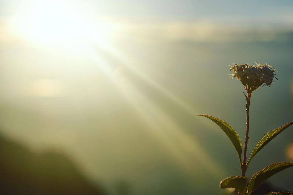 Breaking Dawn, Φως, Ήλιος, Τοπίο, Ουρανό, Φύση, Χρώμα
