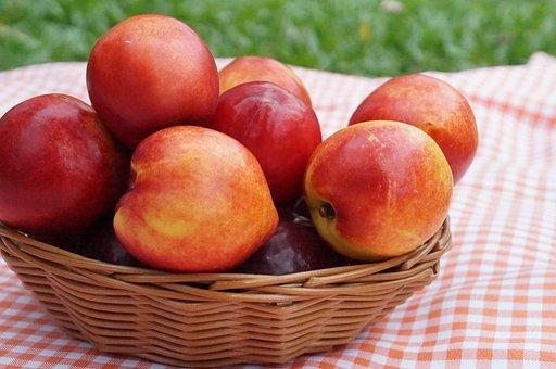 Summer, Nectarine, Fruit, Healthy