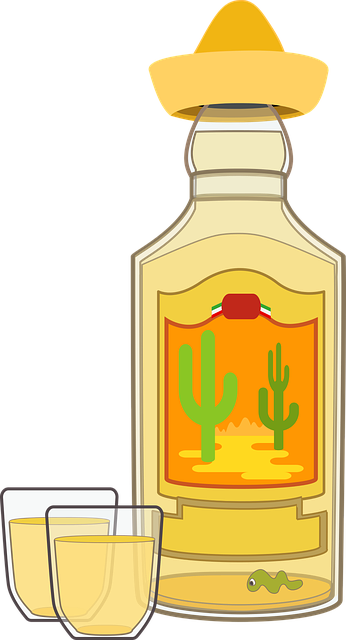 Graphic Tequila Bottle 183 Free Vector Graphic On Pixabay