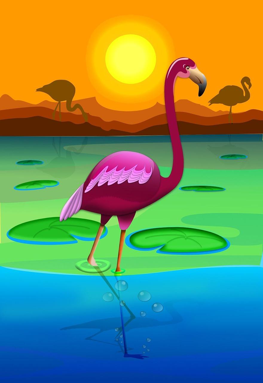 которые связаны картинки мультяшного фламинго цвет может