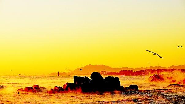 Morning, Sunrise, Landscape, Nature
