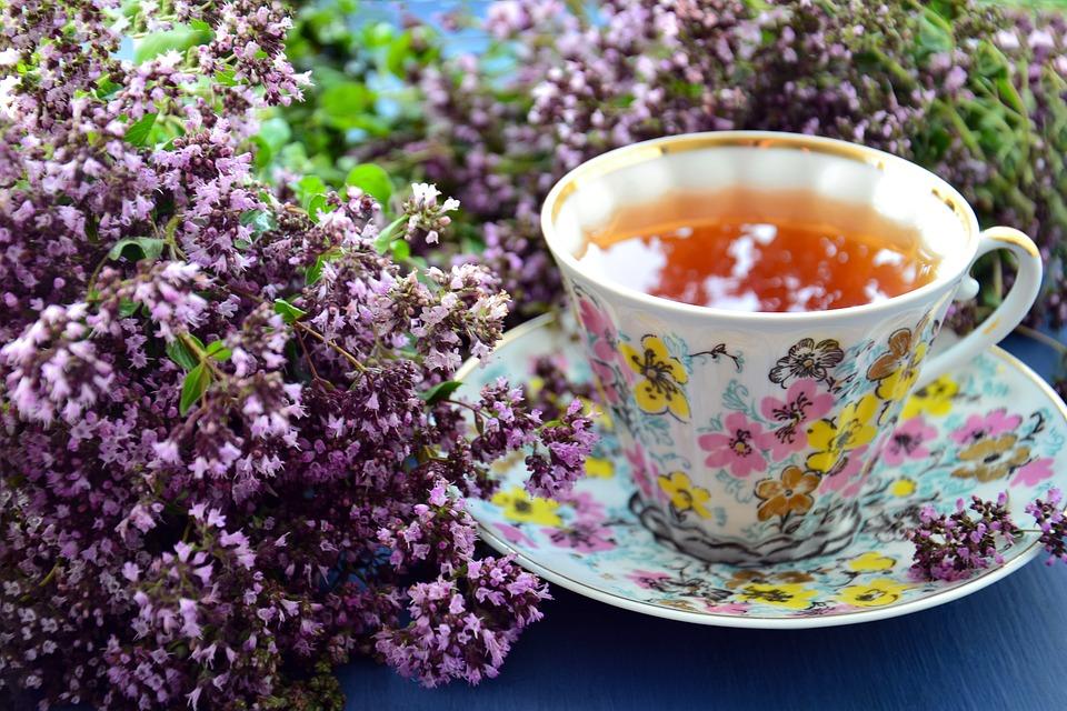 Thé Tisane Phytosanitaires Fleur - Photo gratuite sur Pixabay