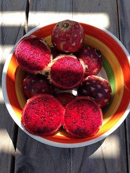 40+ Free Pitaya & Dragon Fruit Images - Pixabay