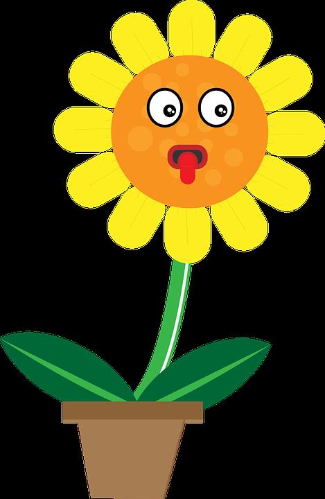 Bunga Matahari Karakter Animasi Gambar Vektor Gratis Di Pixabay
