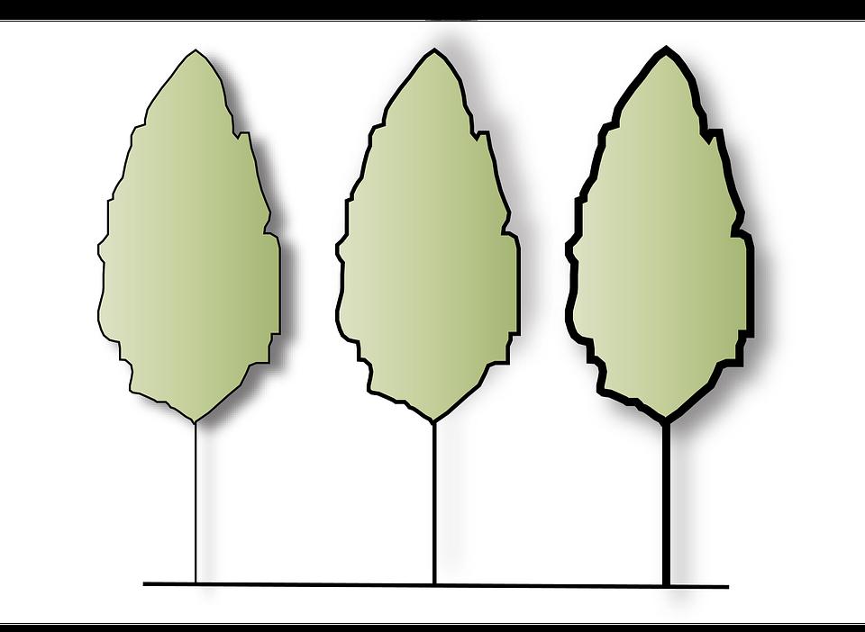 árbol Naturaleza Dibujo Color Imagen Gratis En Pixabay