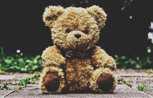 Teddy Bear Images Pixabay Download Free Pictures