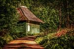 chata, drogowe, las