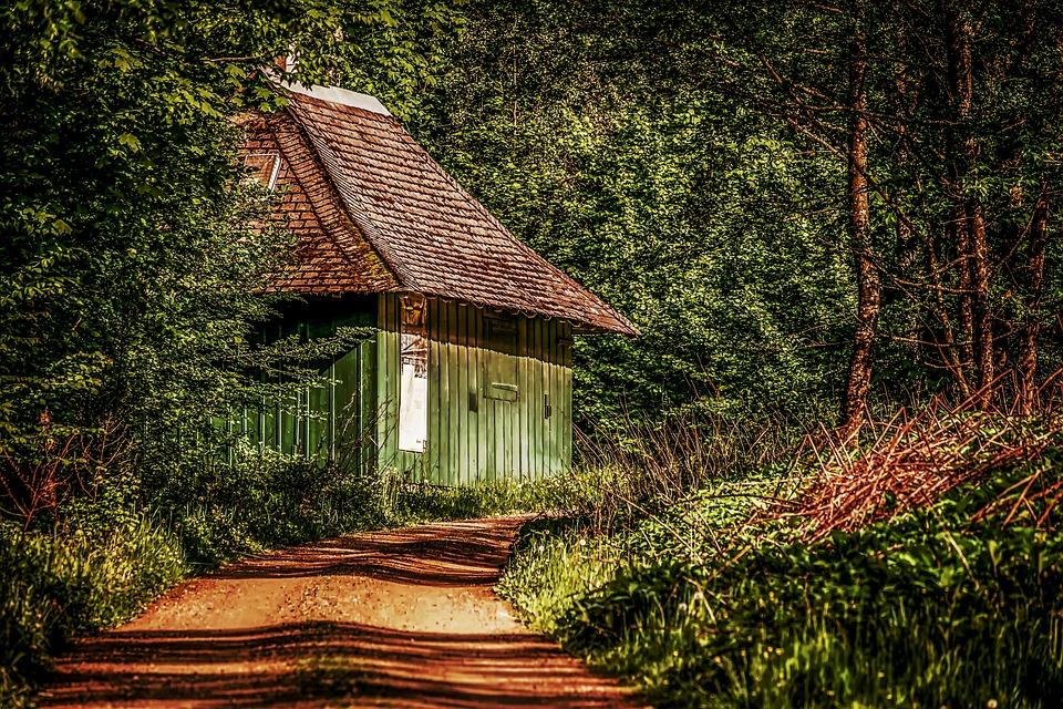 ormanda kulübe ile ilgili görsel sonucu